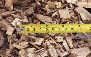Bioenergy Fuels wood chips