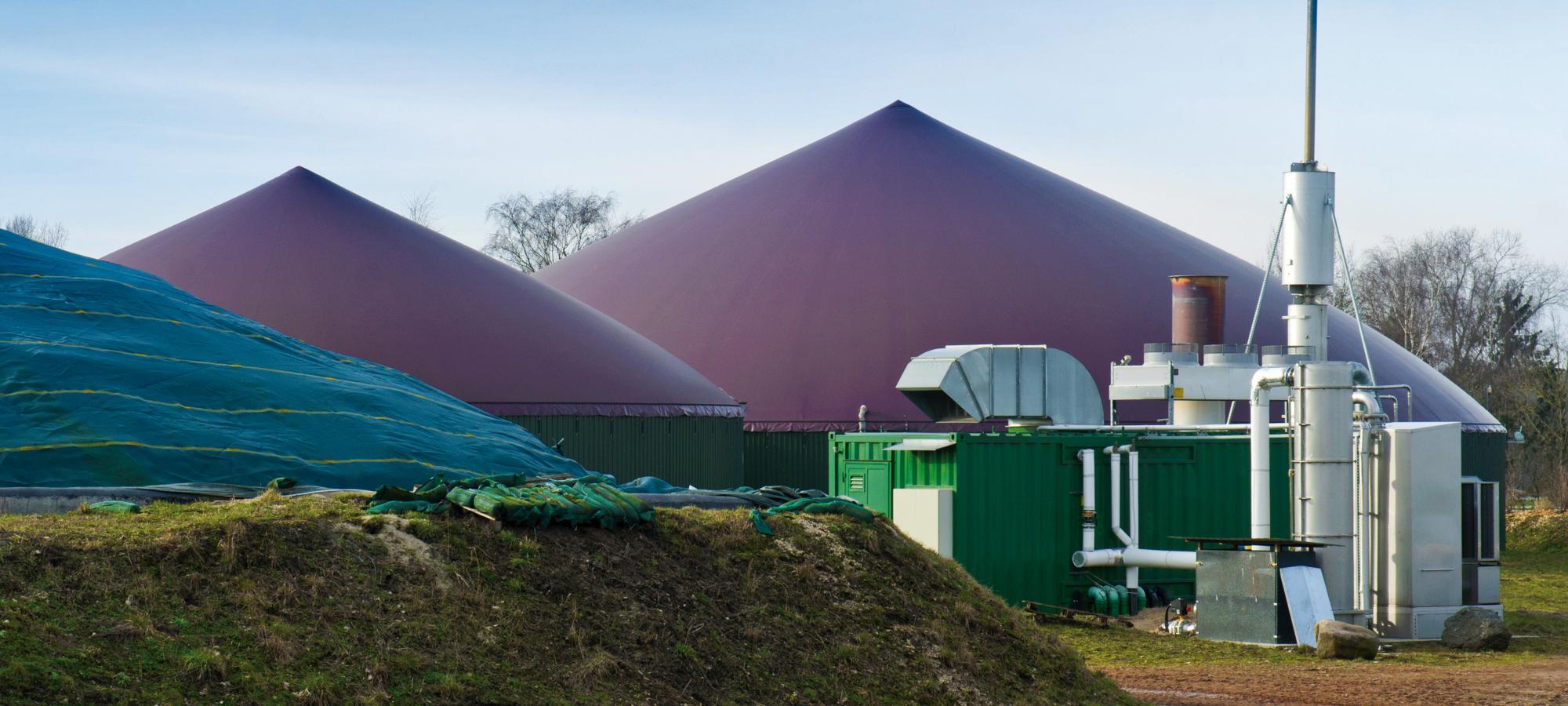 thermochemische Vergasung von Biomasse